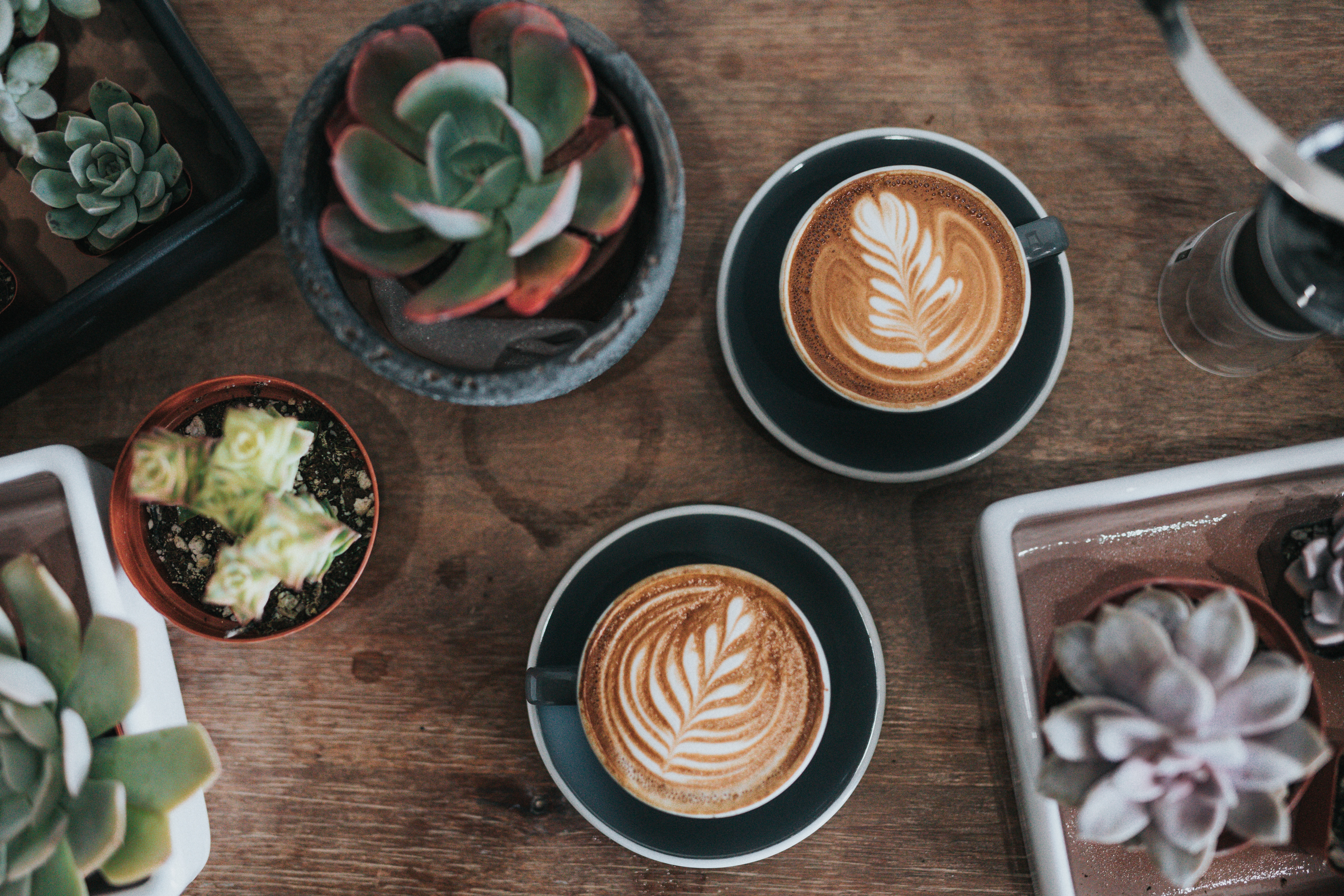 Three of the Best Nearby Coffee Shops